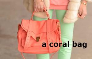 a coral bag