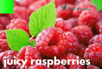 название ягод на английском