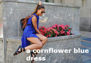 a cornflower blue dress