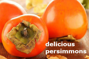 delicious persimmons
