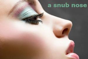 a snub nose