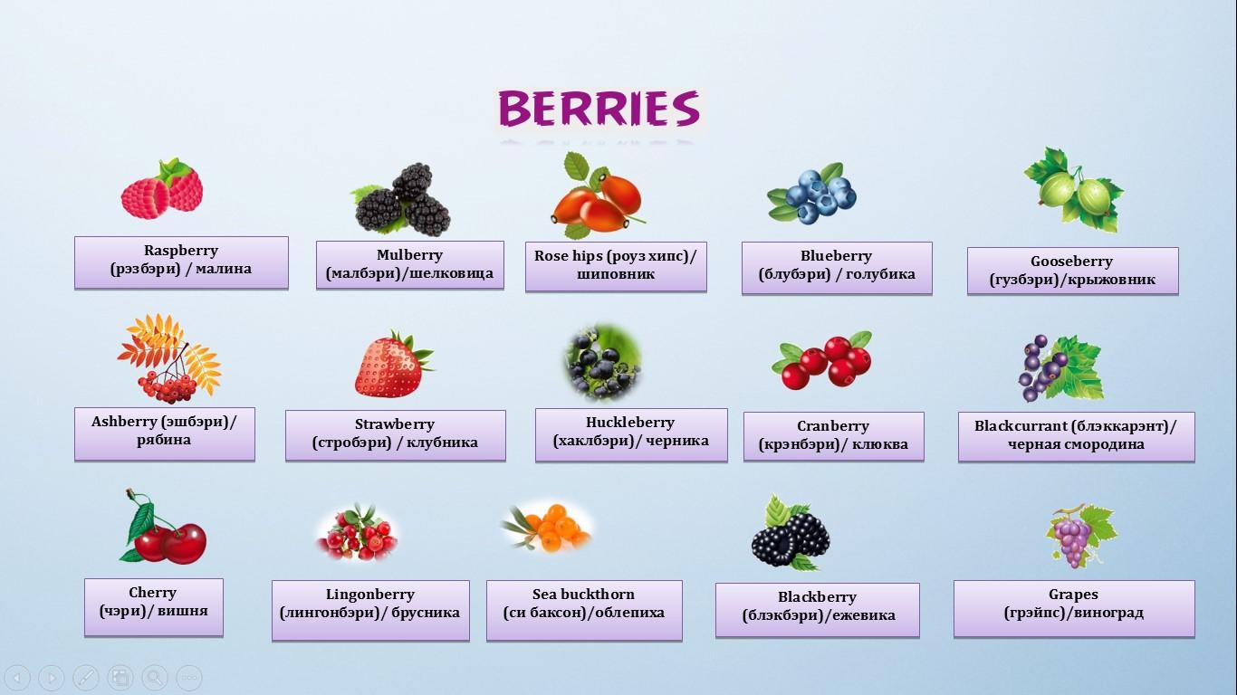 ягоды на английском языке